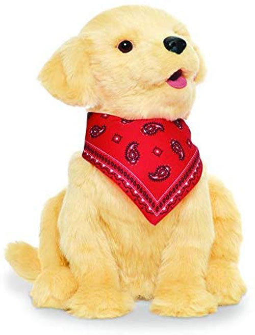 JOY-FOR-ALL-Puppy-toy