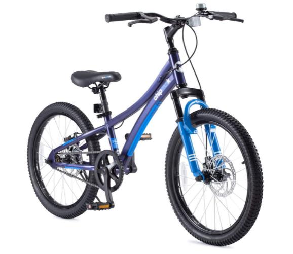 Royalbaby Mountain Bicycle