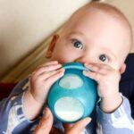 Best Baby Bottles Reviews